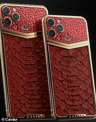 The firm also sells the latest iPhone 11 wrapped in python leather