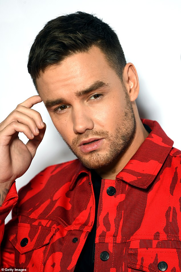 Different worlds: Liam Payne has very candidly revealed that he wouldn't even known what to say to his former band mate Harry Styles now due to how different they've become