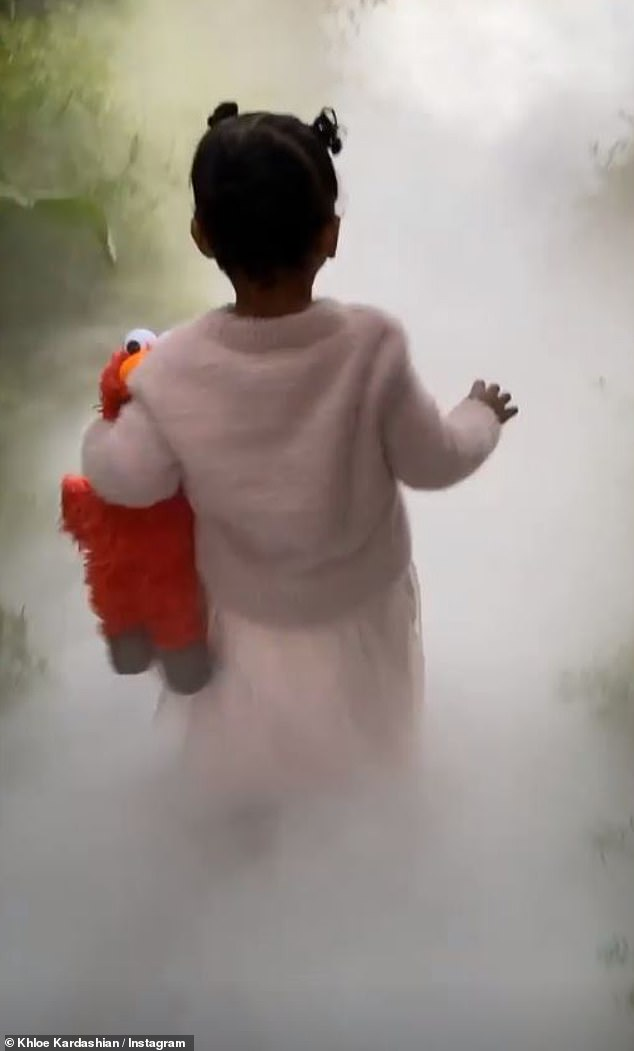 Party animal: The one-year-old little girl wore a pink set and carried her favorite stuffed animal, Elmo, into the foggy attraction