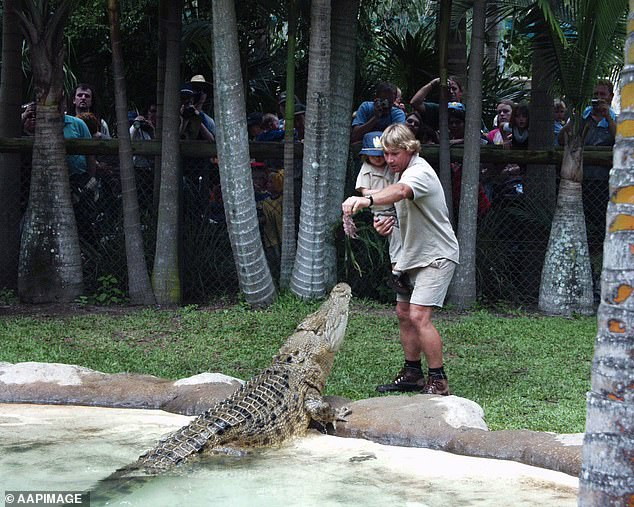 Legacy: Bindi is the daughter of the late conservationist Steve Irwin - better known as the 'Crocodile Hunter' - and his wife, Terri. Steve (pictured in 2002) died at the age of 44 in September 2006 after being pierced in the chest by a stingray barb in Batt Reef, Queensland