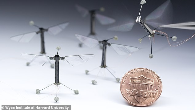 The researchersbelieve RoboFly has a range of purposes including helping human users to detect gas leaks or assisting volunteers on search and rescue missions