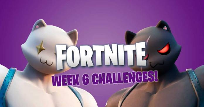 fortnite week 6 challenge