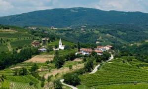 Slovenia, Goriska Brda