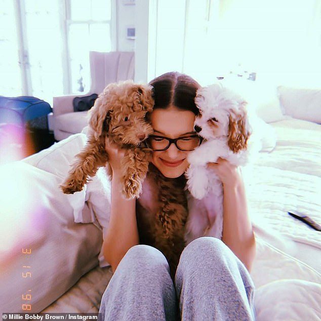Fluffy friends:The 16-year-old can be seen holding her dogs up for the camera, while posing in her lavish living room