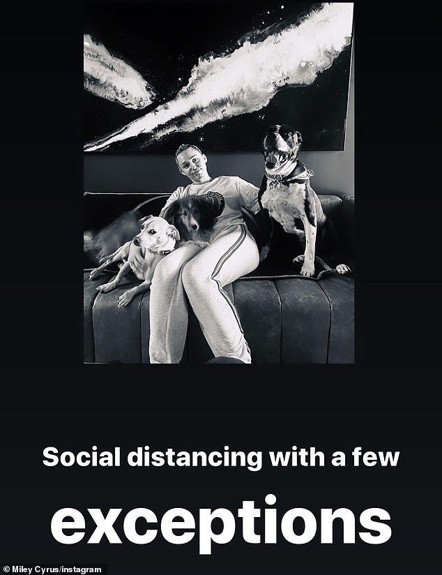 'With a few exceptions': Meanwhile, Grande's fellow Don't Call Me Angel singer Miley Cyrus Instastoried a snap on Sunday of herself social distancing with three dogs
