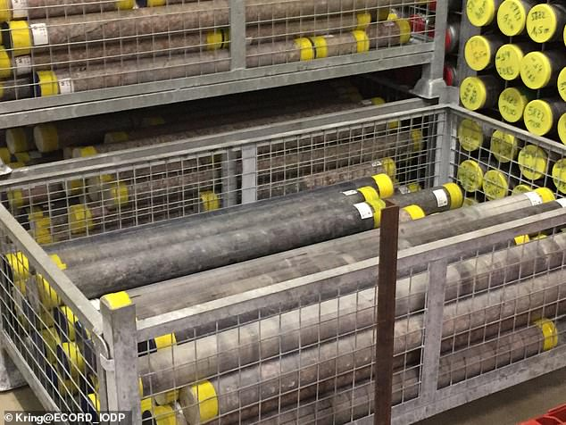 Portion of Expedition 364 rock core that led to the discovery of the hydrothermal networks.These hydrothermal networks - or hot waterways - would have created the perfect conditions for micro-organisms to thrive about four billion years ago