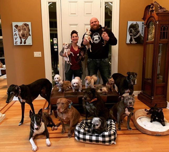 Chris and Mariesa with their 20 rescue dogs