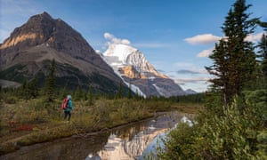 A hiker on the Berg Lake trail with Mt. Robson's reflection and Rearguard mountain in the foreground, Mt. Robson Provincial Park, British Columbia.