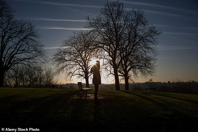 A new Dutch study claims that a lack of sunlight does not influence a person's mood (stock image)