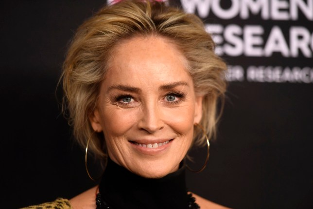 BEVERLY HILLS, CALIFORNIA - FEBRUARY 28: Sharon Stone attends The Women's Cancer Research Fund's An Unforgettable Evening Benefit Gala at the Beverly Wilshire Four Seasons Hotel on February 28, 2019 in Beverly Hills, California. (Photo by Frazer Harrison/Getty Images)