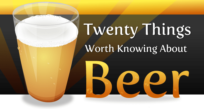 20 Things worth knowing about Beer Infographics