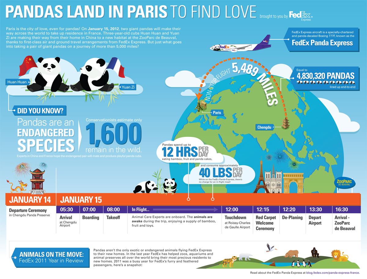 Pandas Land in Paris to Find Love