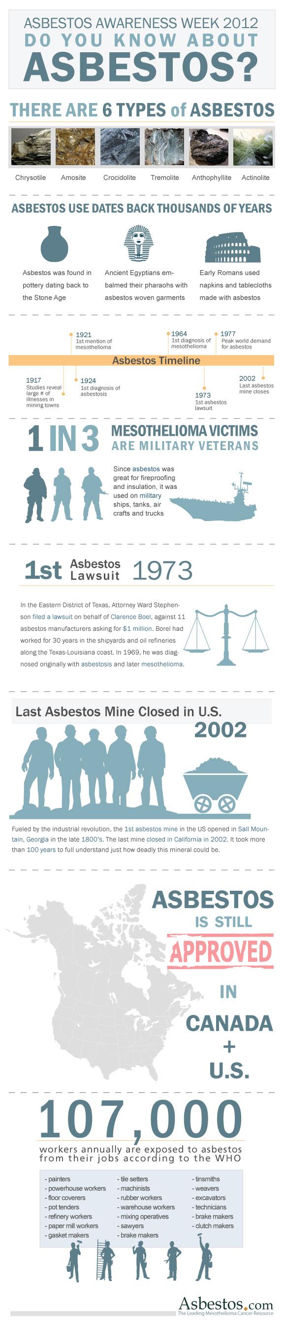 Asbestos 2012 infographic