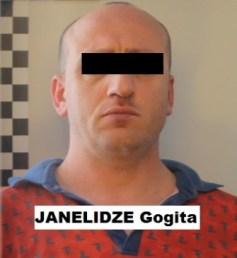 janelidze_gogita