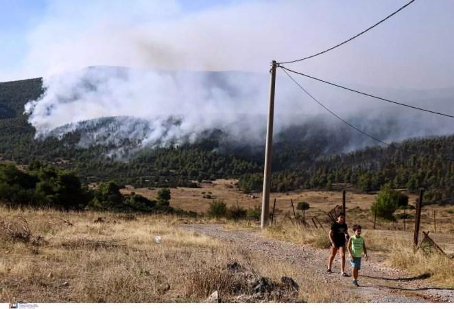 Φωτιά στα Βίλια Όρος Πατέρας
