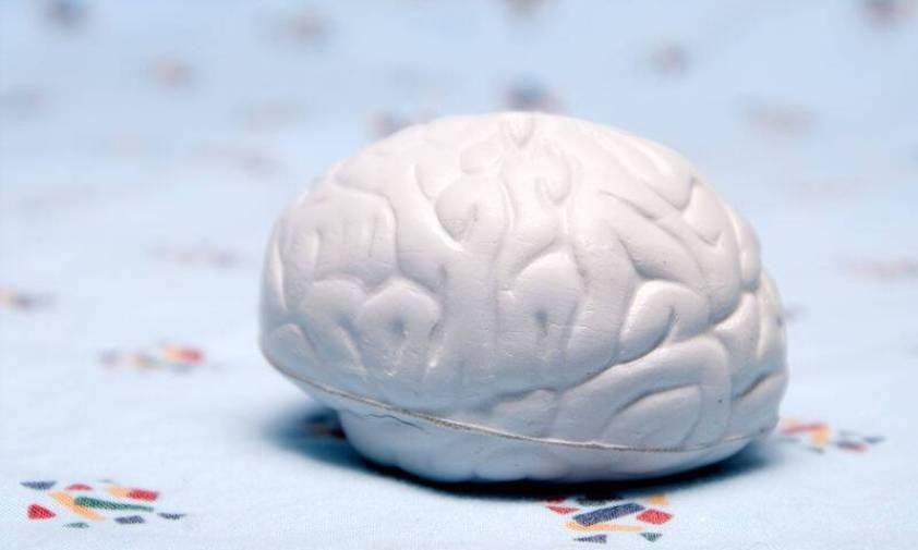 bigstock-Brain-3075586