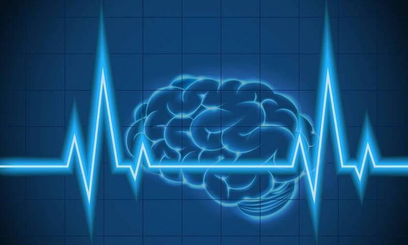 bigstock-Brain-of-concept-97291655