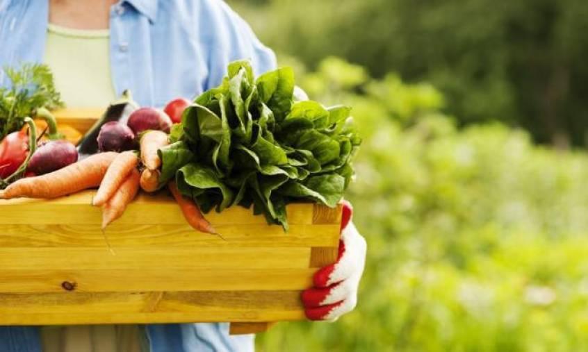 Βιολογικά τρόφιμα: Είναι πιο θρεπτικά; Τι κερδίζετε; Τι δείχνουν οι έρευνες [vid]