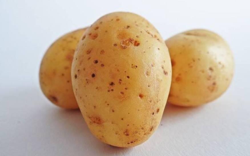 Γιατί πρέπει να ΜΗΝ βάζετε τις πατάτες στο ψυγείο…