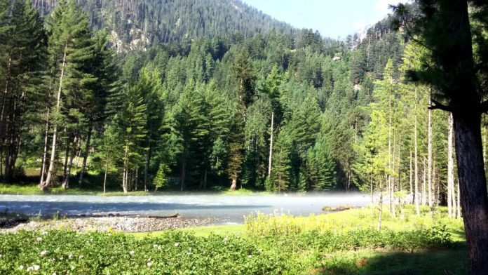 Kumrat Valley, A renowned tourist destination in Upper Dir, KP. : Photo by News Lens Pakistan/