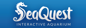Seaquest Interactive Aquarium Review