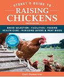Community chickens in Kansas Magazine