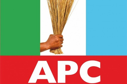 "APC Dumps ""Change""  Slogan, Adopts ""Progress"" As New Slogan"