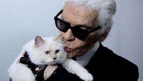 Late Fashion Designer, Karl Lagerfeld Wills $200m Fortune To Cat