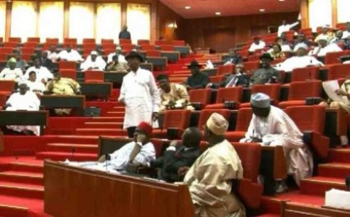 Nigeria Senate In Rowdy Session Over Alleged Militarization Of 2019 Elections