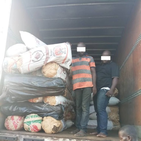 Image result for NDLEA Lagos Command intercepts over N20m worth of drugs
