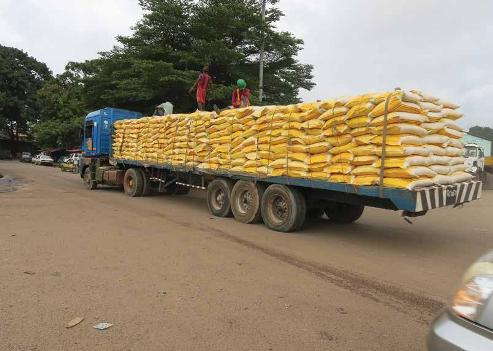 Local Rice Millers Raises Alarm Over Massive Foreign Rice Smuggling Into  Nigeria