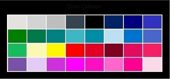 color palette winter type