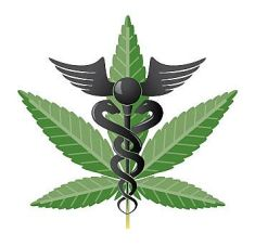 medical-cannabis-doctor