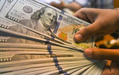 Dolar Kuru İçin Ünlü Ekonomistlerin  Yorumu