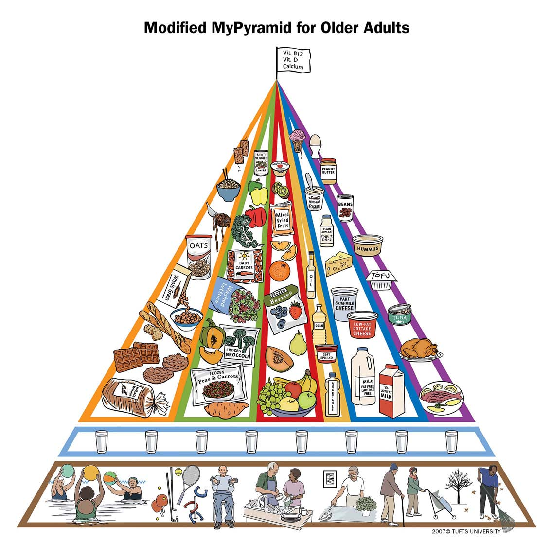 Tufts Modified Mypyramid Addresses Older Adultstary Needs
