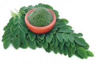 moringa-medicines