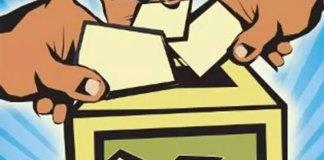AP Political News, AP Election News, AP Votes Counting News, Newsxpressonline