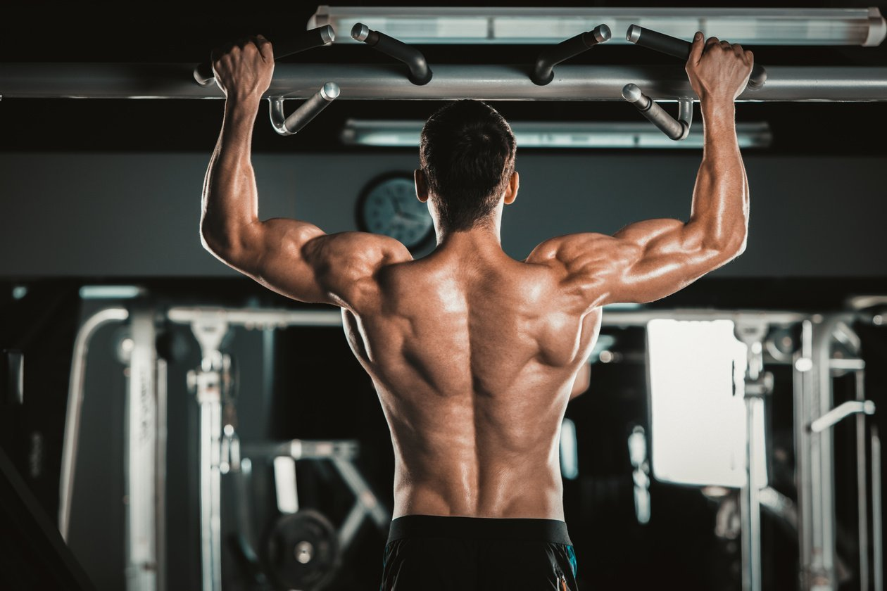 Getting Ripped 6 Muscle Building Tips For Beginners