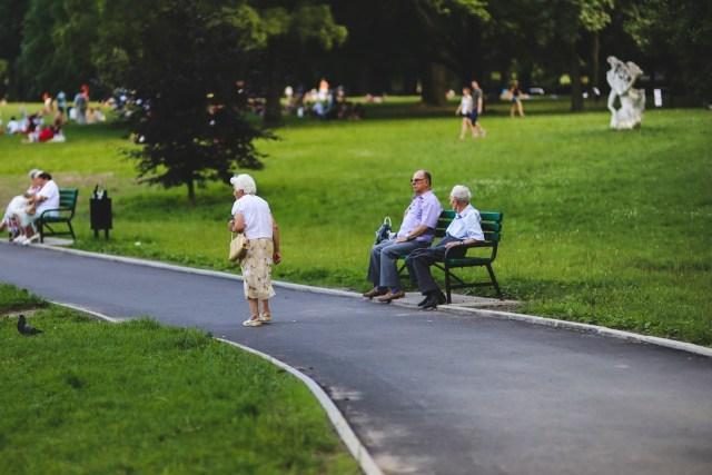 Helps Adult Elders To Take Part In Various Activities