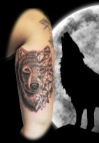 Tatouage Loup graphique - Graphic Wolf tattoo - France (40)