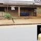 Stories of donations put me under intense pressure –Abigail Ogunyinka