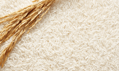 10,000 farmers will benefit from N9bn Dangote‎/Oyo rice production agreement – Ajimobi