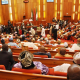 Senate to Fashola: Resign if you can't cope with your job