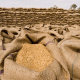 Seed licence: Agenda to enhance food security