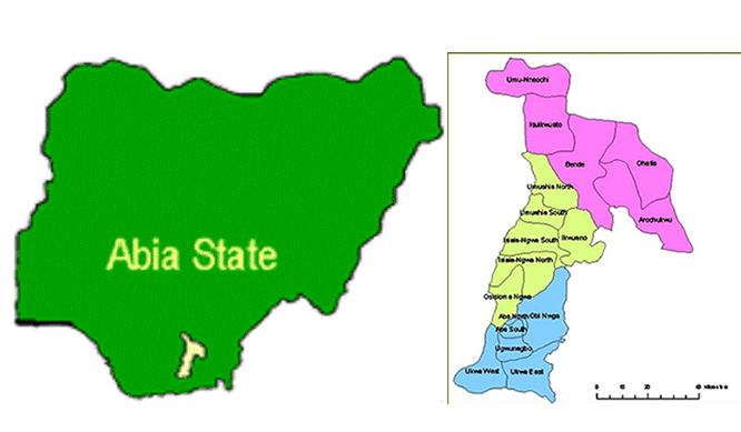 Abia Rep hails court, assures constituents of better representation - New Telegraph Newspaper