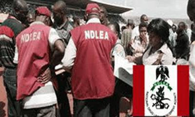 NDLEA arrest policeman, trafficker, for supplying drugs to 'Boko-Haram' insurgents in Borno