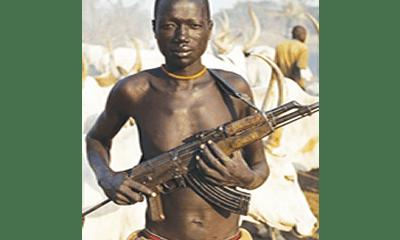 Benue: Five farmers murdered after Osinbajo's visit