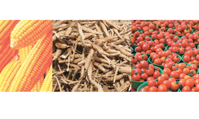 New agric laws: How far can NASS go?