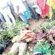 Plateau: How over 50 people were slain in latest killings