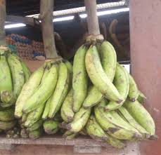 Plantain, the super food